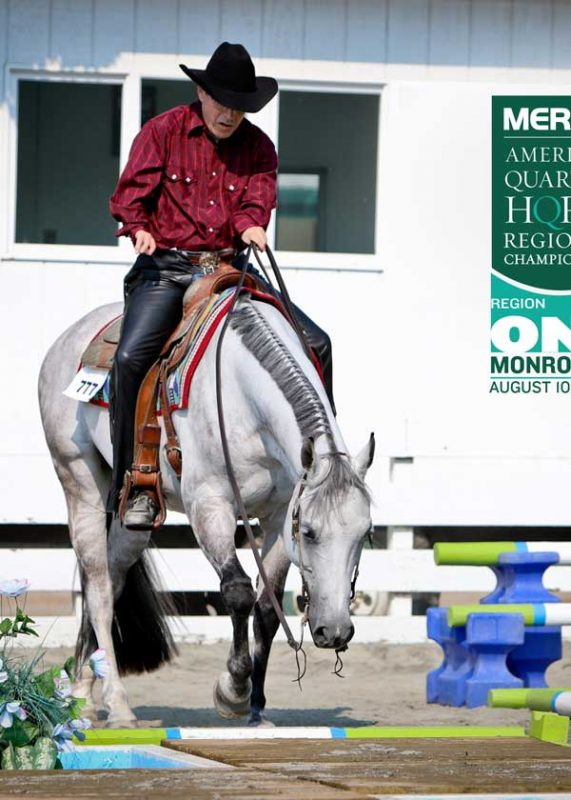 man-in-western-tack-grey-quarter-horse
